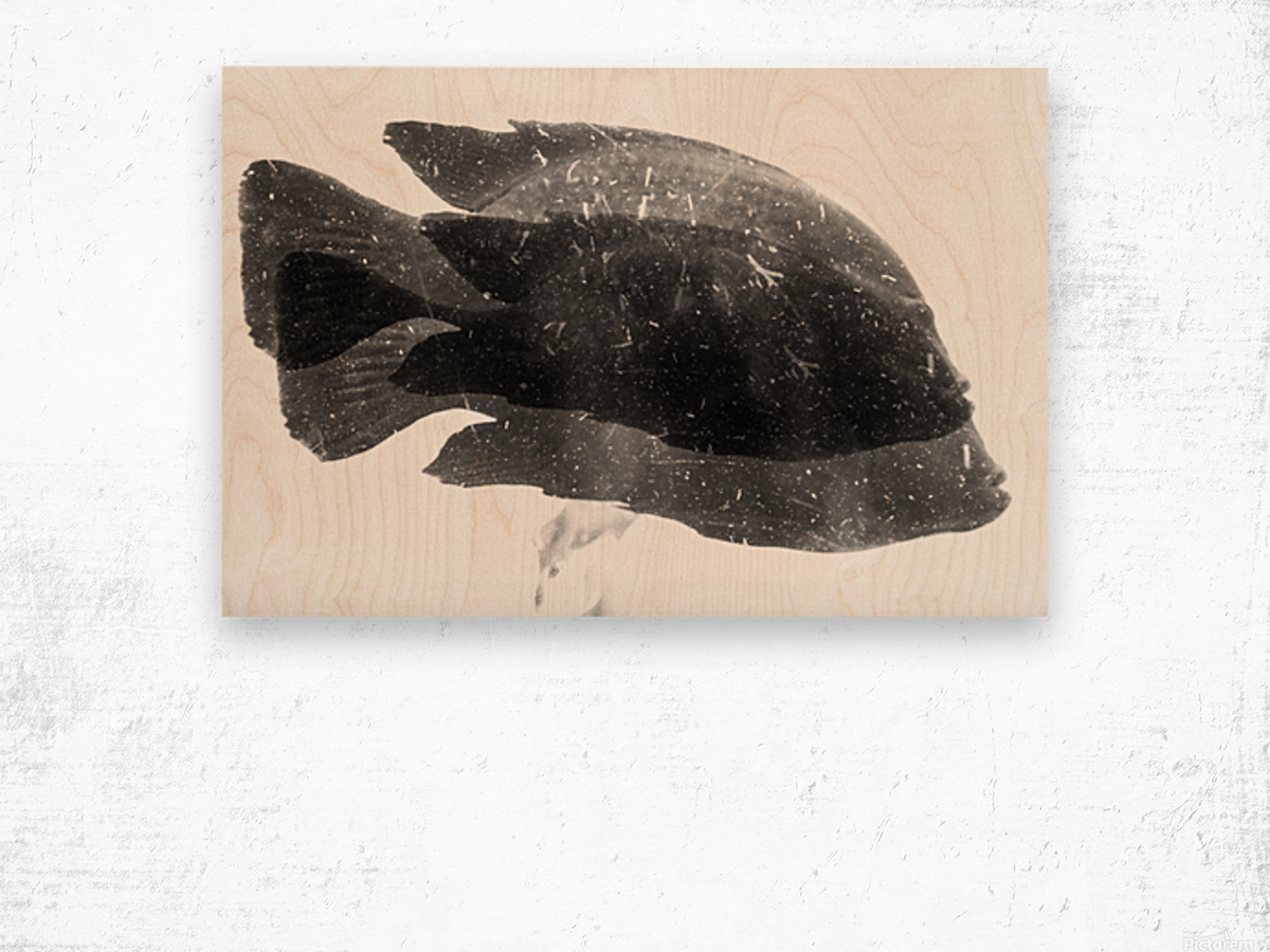 DOS FISHES Wood print