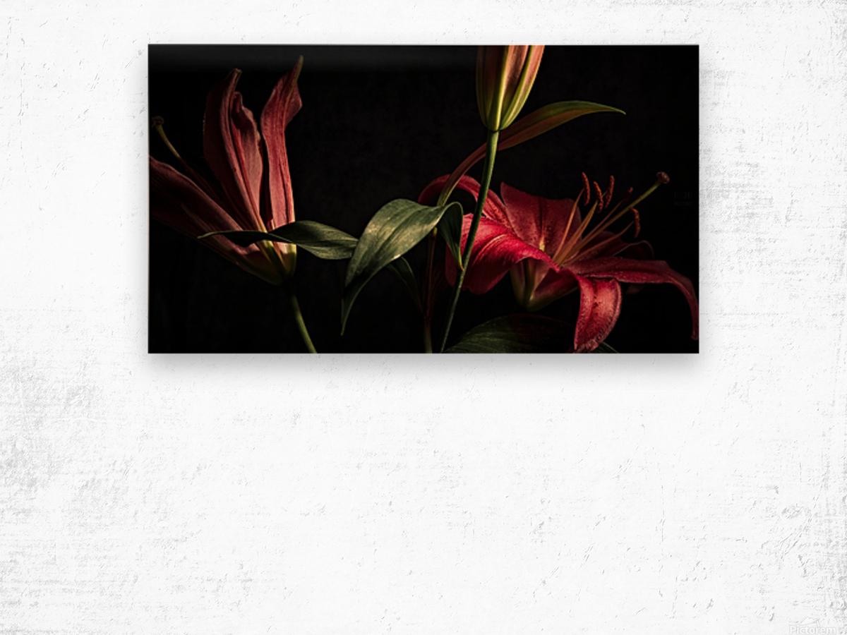 Floraison 2 Wood print