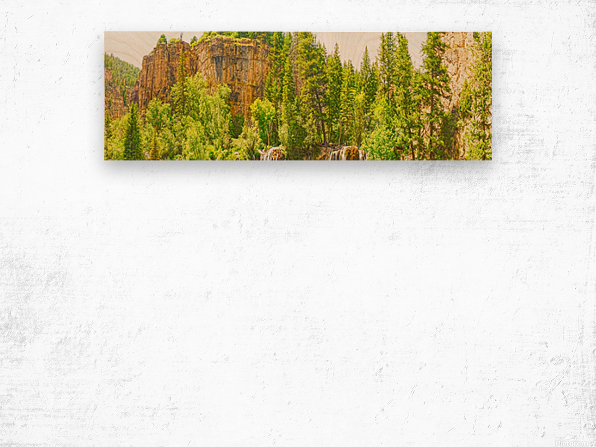 In Gods Country Wood print