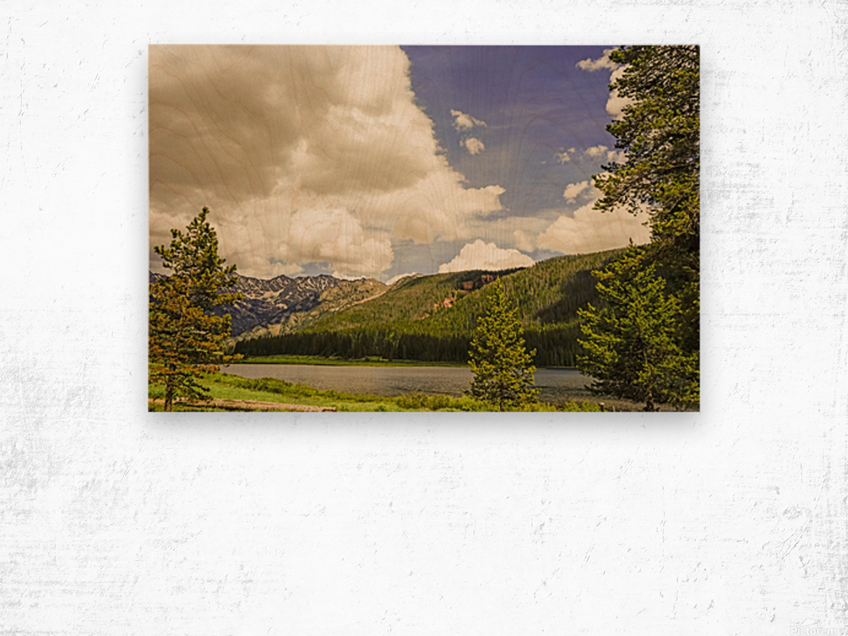 Back Country Colorado 6 of 8 Wood print