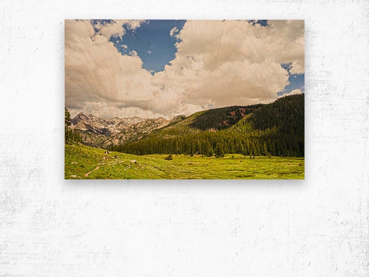 Back Country Colorado 3 of 8 Wood print