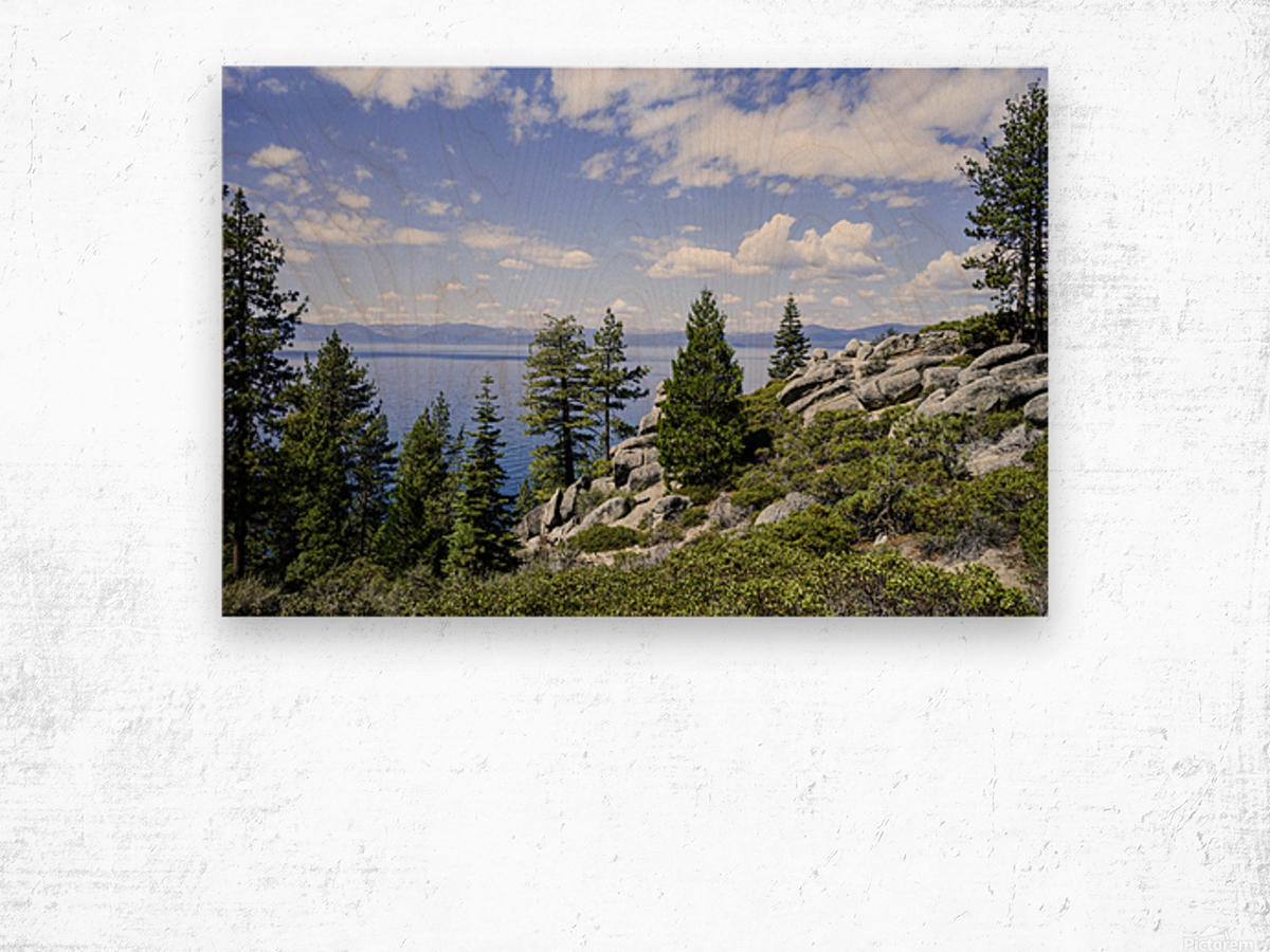 Spring at Lake Tahoe 5 of 7 Wood print