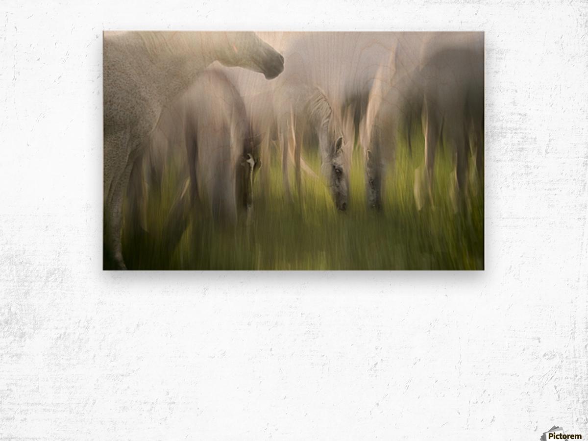Impression by milan malovrh  Wood print