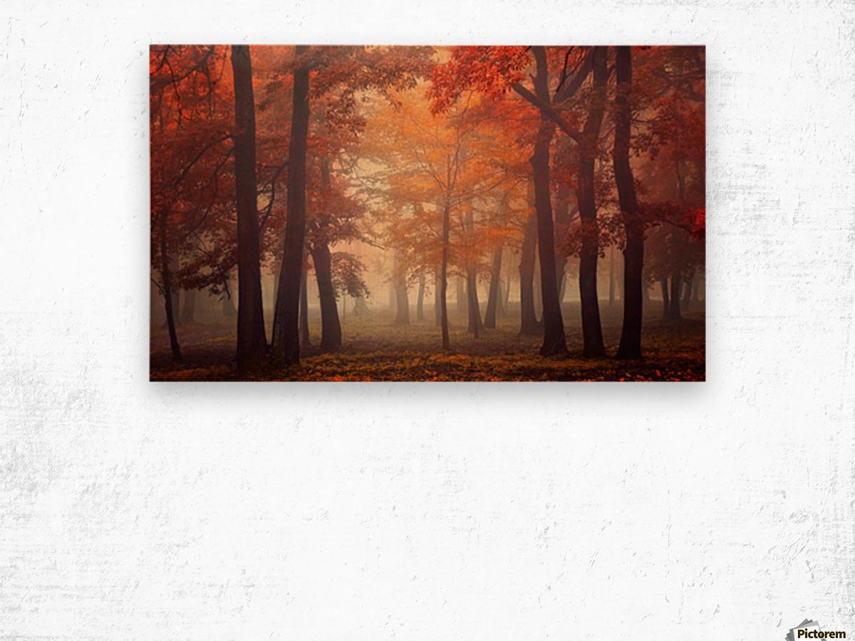 Feel Wood print