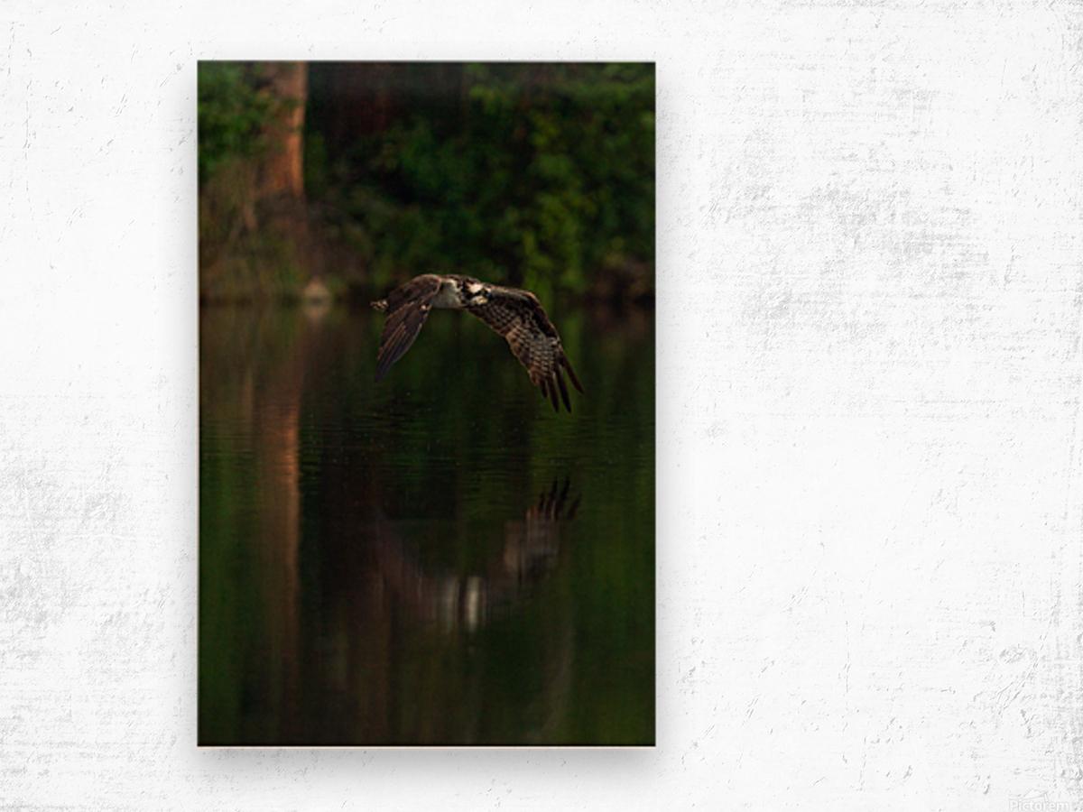 Wesley Allen Shaw 00747 Wood print