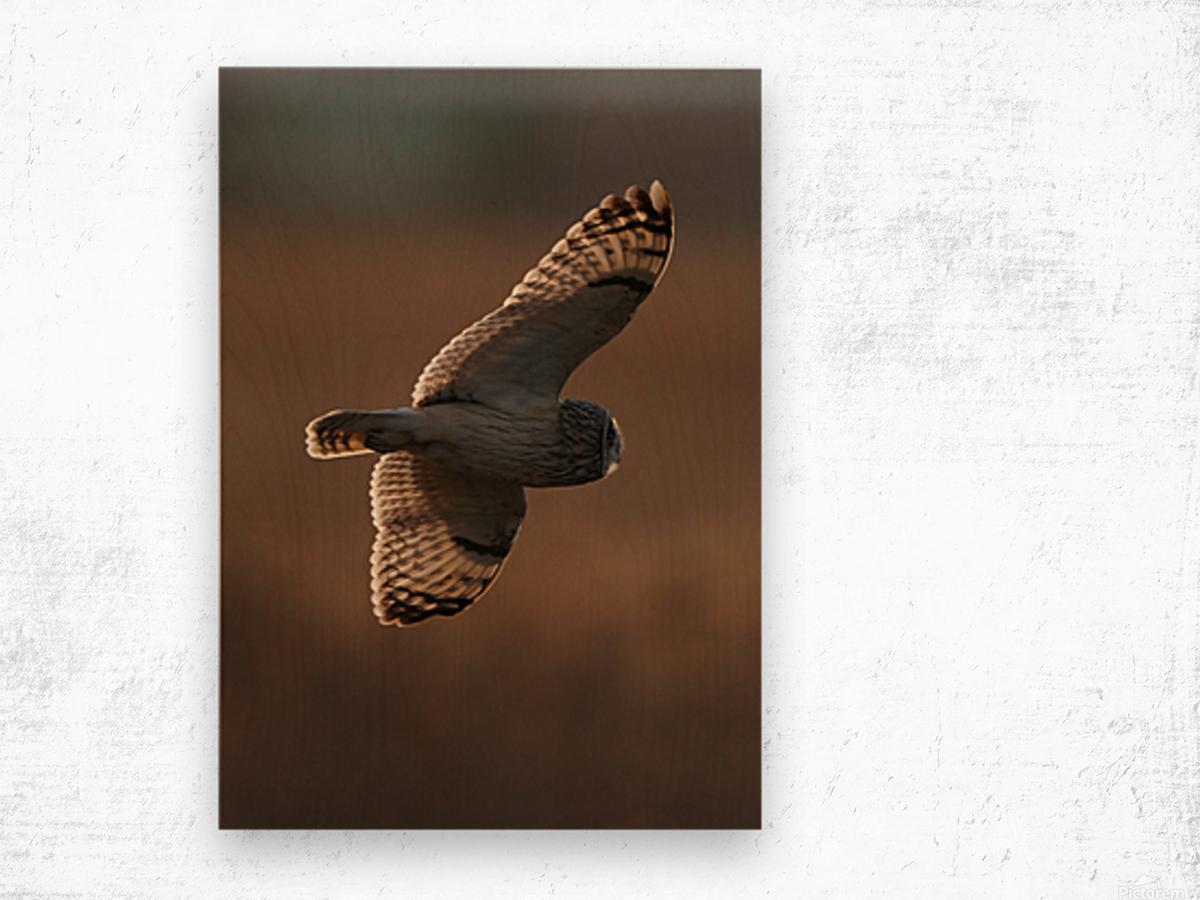 Wesley Allen Shaw 09068 Wood print