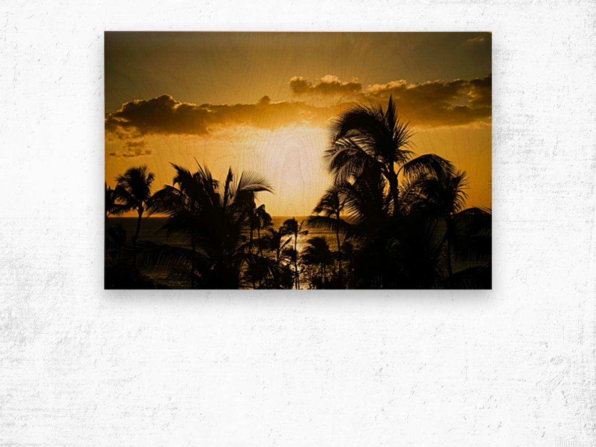 Radiant Hawaii Wood print