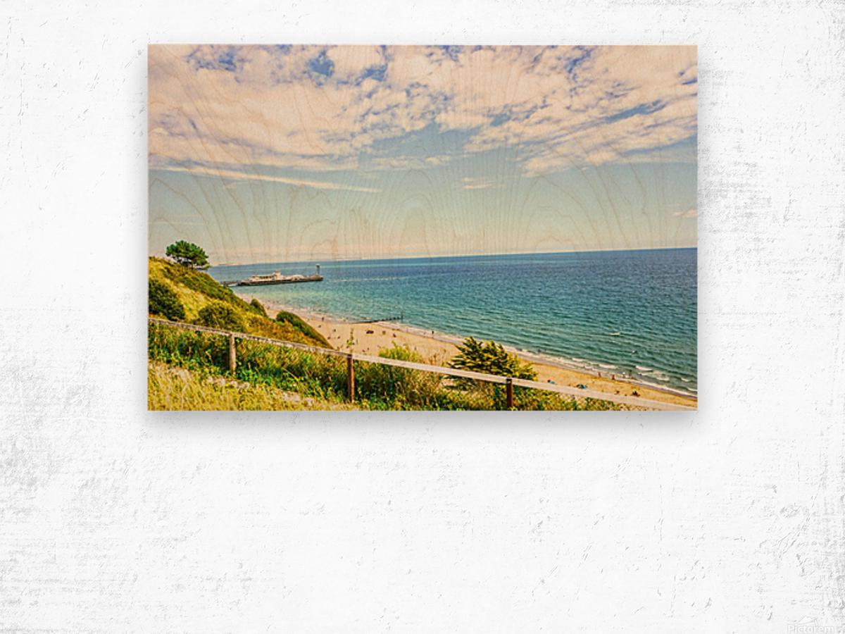 The Southern Coast of England Wood print
