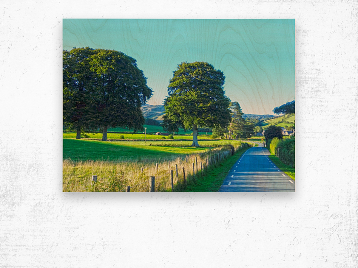 One Day in Wales 1 of 5 Wood print