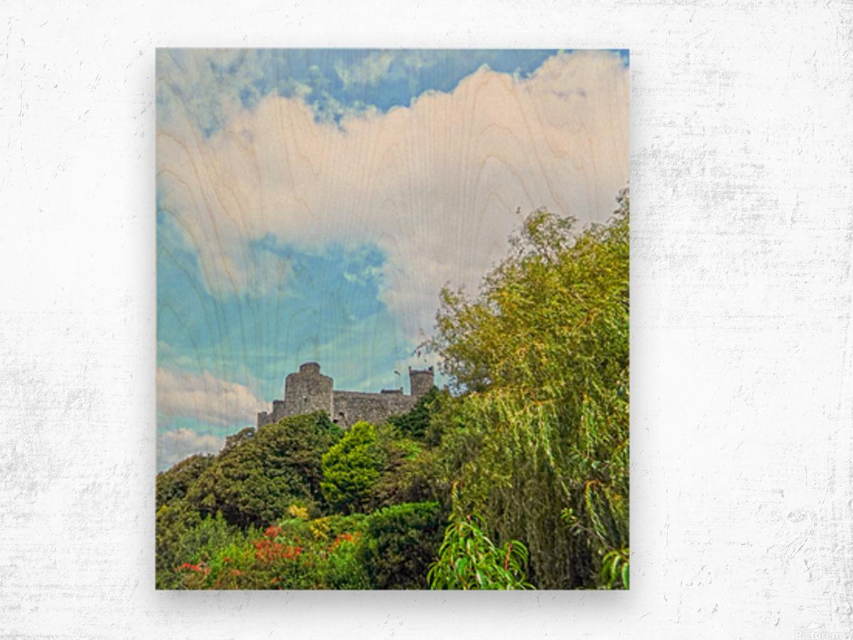 Wondrous Aberystwyth 4 of 5 Wood print