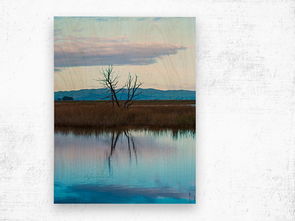 20190228 DSC 0078 2 Wood print