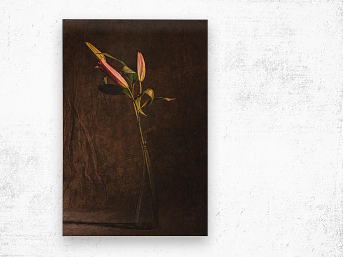 Etude Zen 3i Wood print