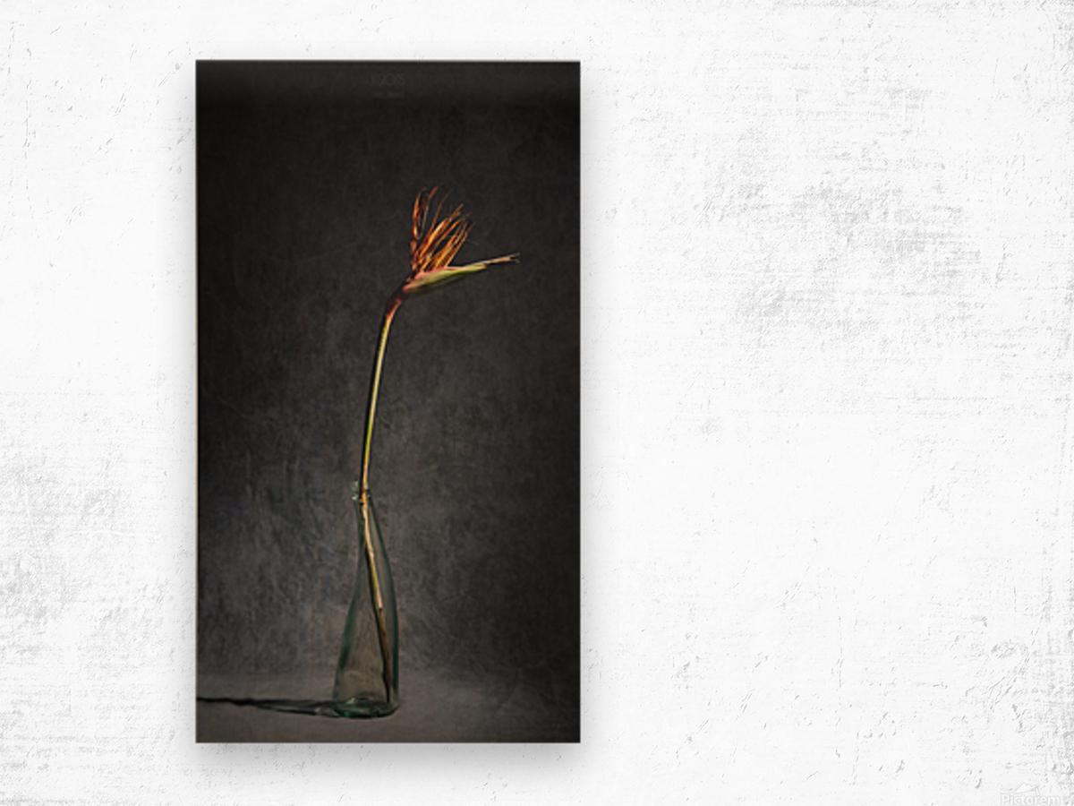 Etude Zen 3l Wood print