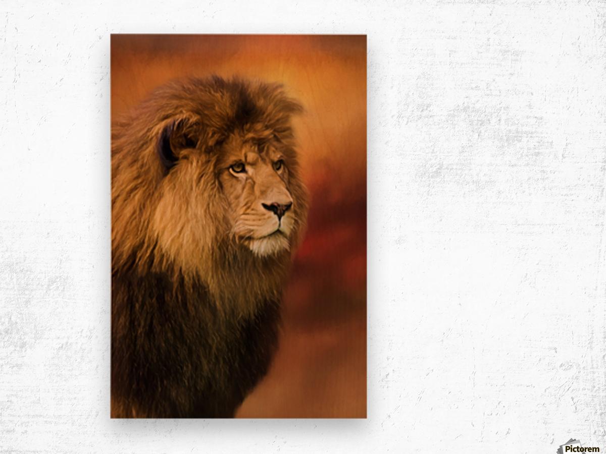 Lion Legacy - Lion Art by Jordan Blackstone Wood print