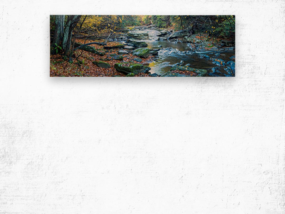 Cowanshannock Creek apmi 1982 Wood print