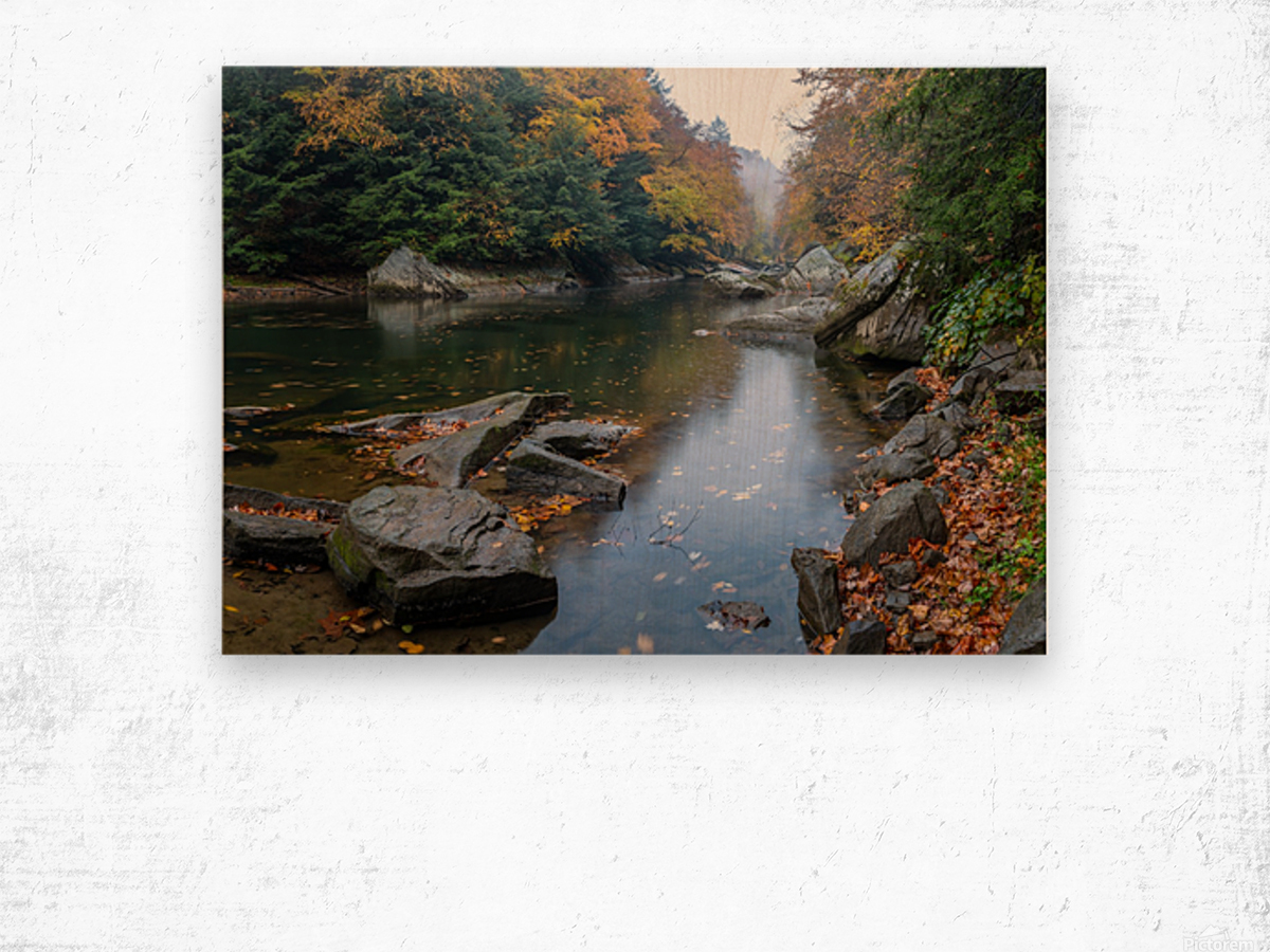 Slippery Rock Creek apmi 1924 Wood print