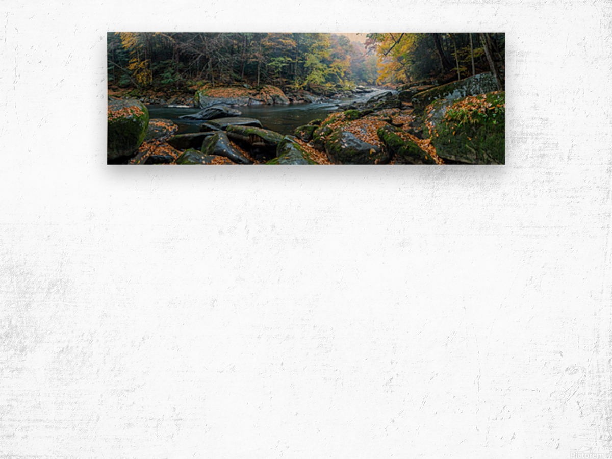 Slippery Rock Creek apmi 1931 Wood print