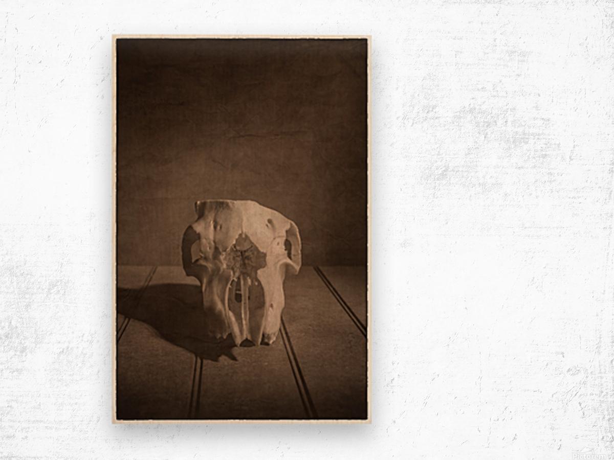 Cranium Wood print