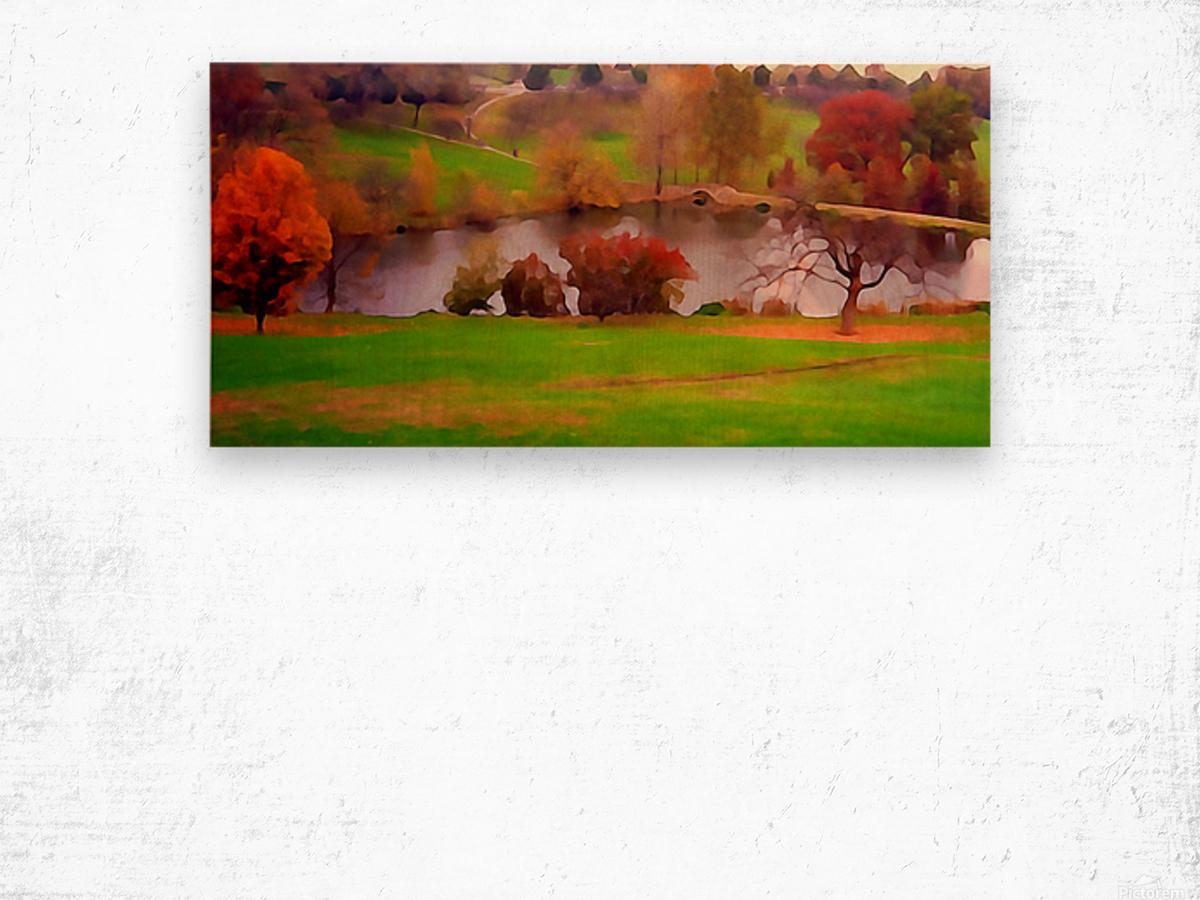 Fall Day at the University of Kansas Wood print