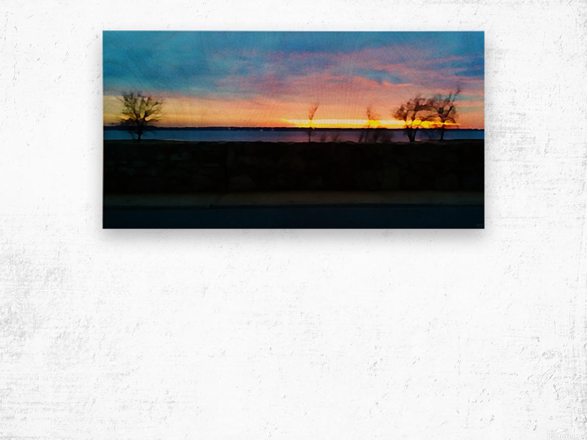 lake sunset 4 trees Wood print