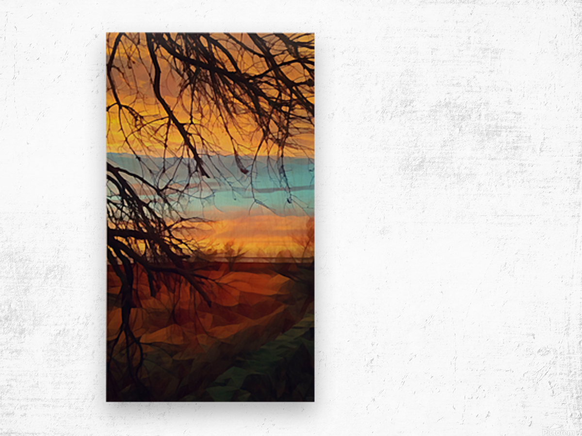 winter blast Wood print