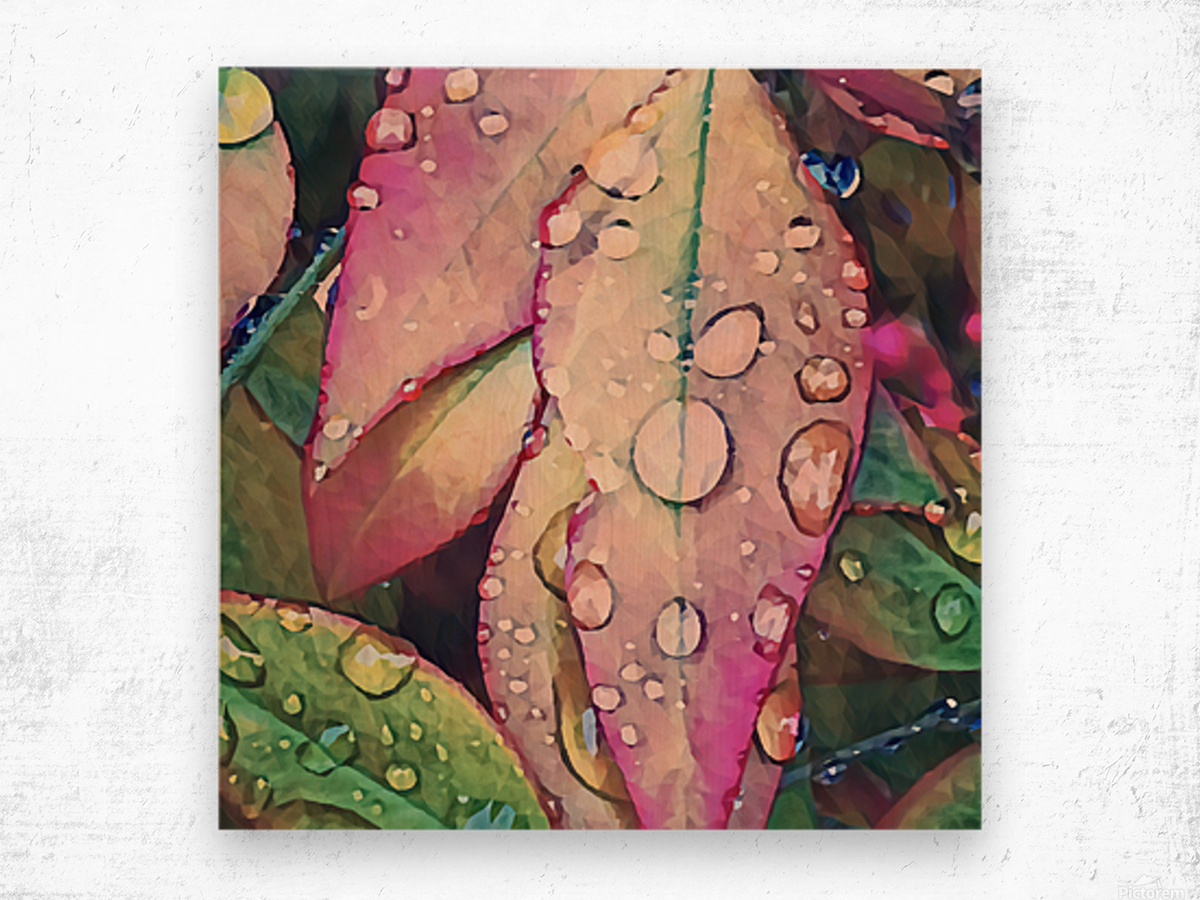 water leaves Wood print