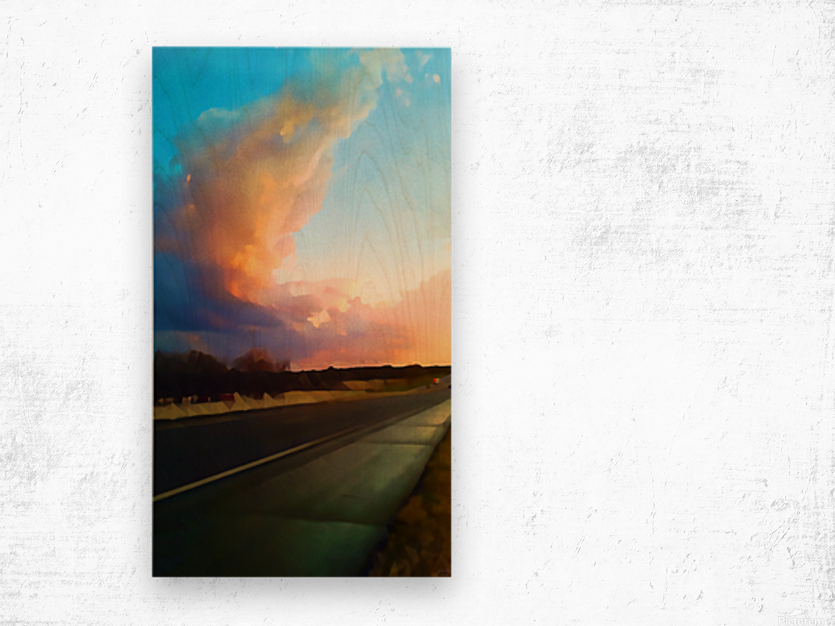 highway beauty Wood print