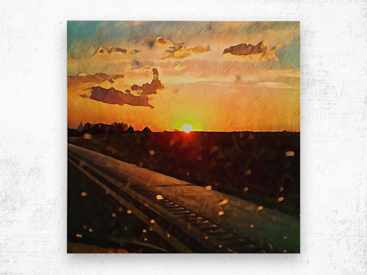 windshield raindrops two Wood print