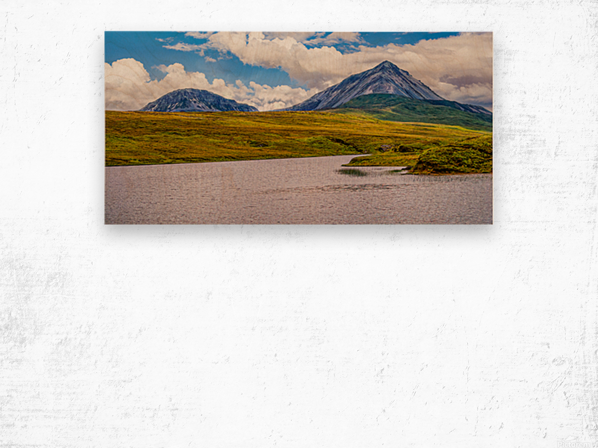 Donegal 19 Wood print