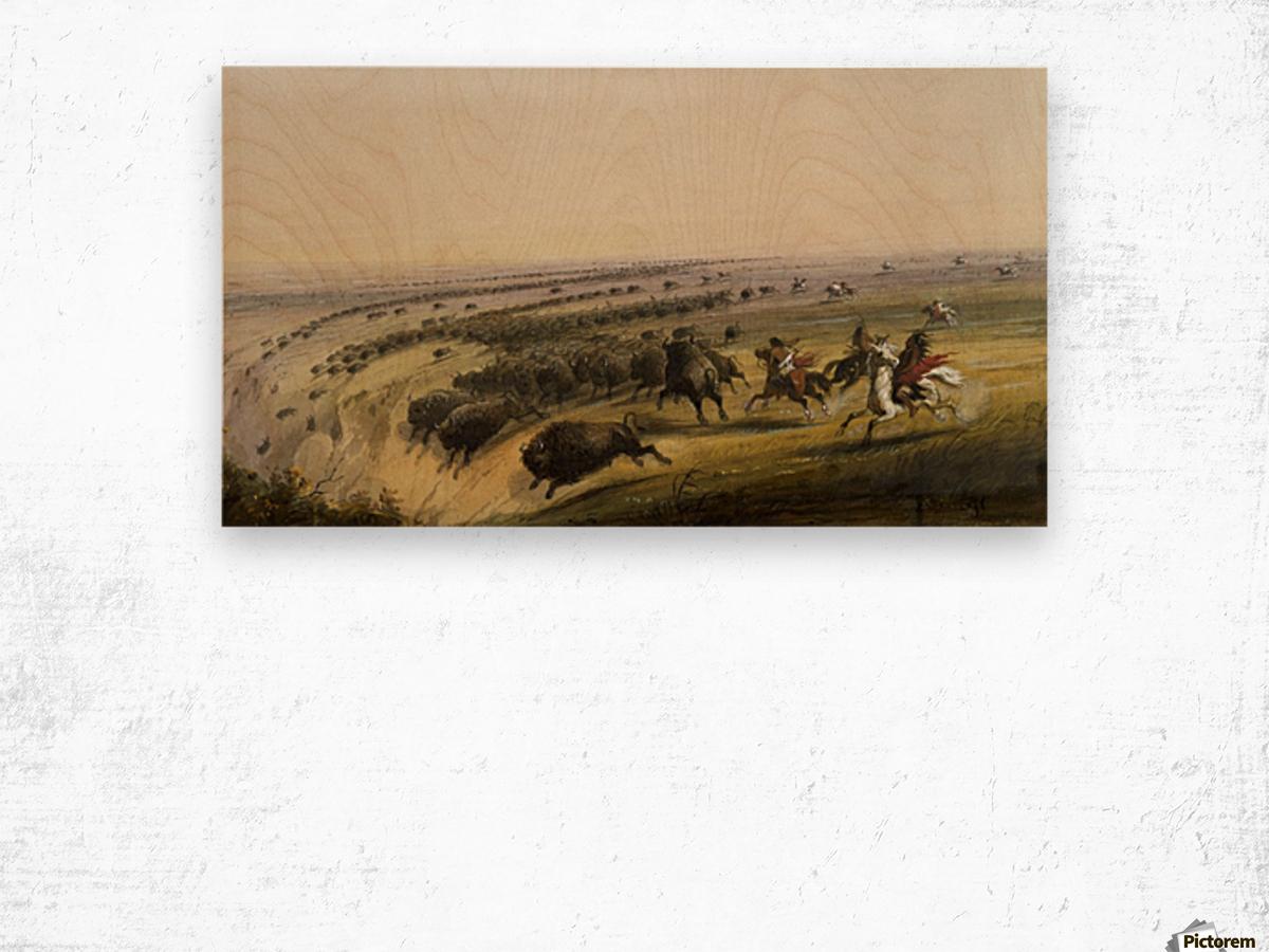 Hunting Buffalo Wood print