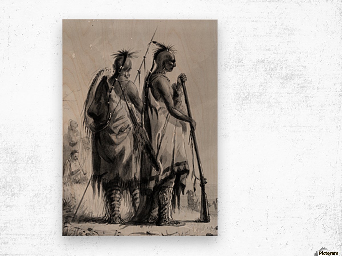 Plains Indian Shields Wood print