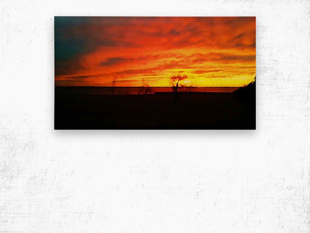Evening Magic Wood print