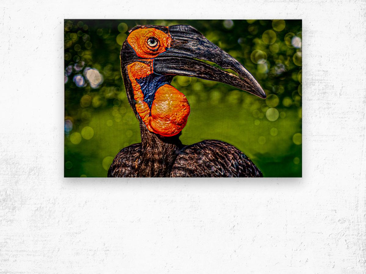 Ugly Bird Wood print