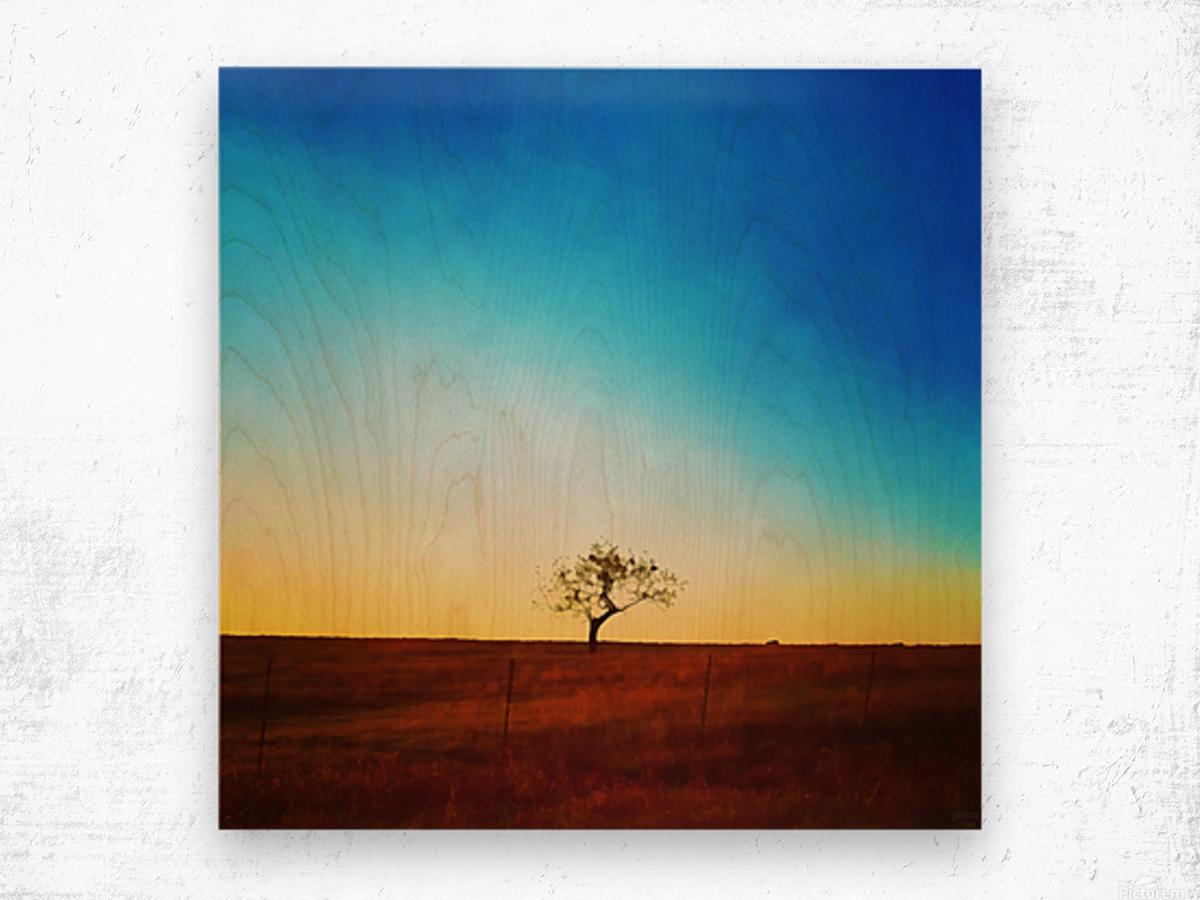 solitude tree Wood print