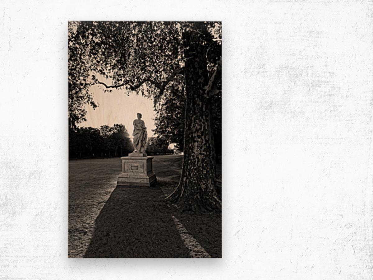 Tuilerie statue Impression sur bois