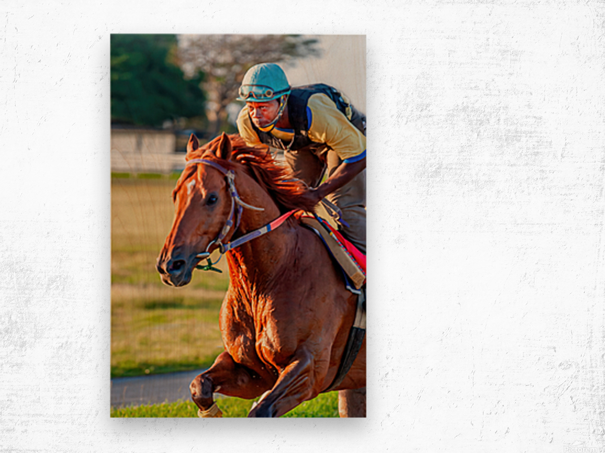 Racehorse11 Wood print