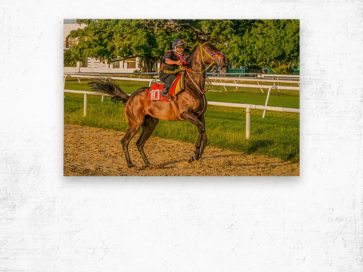 Racehorse12 Wood print