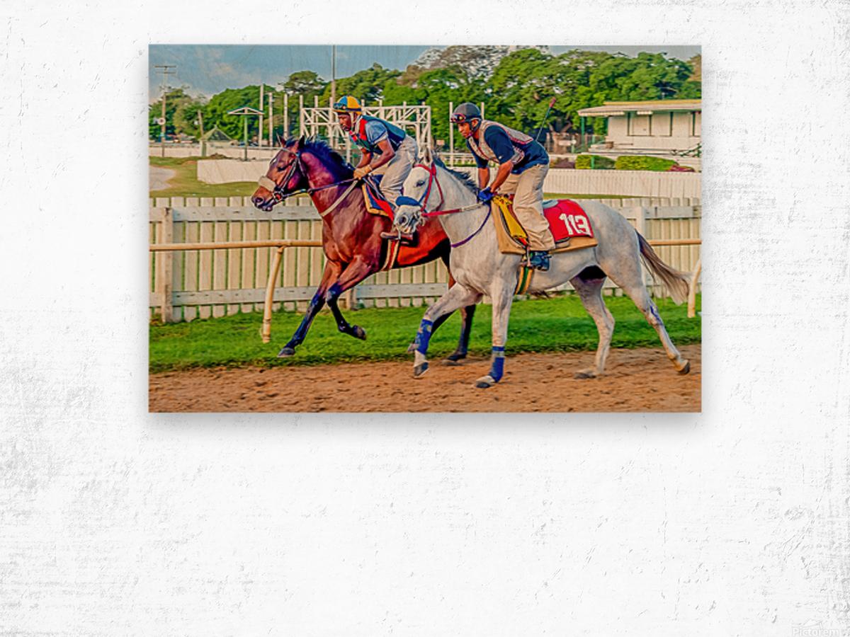 Racehorse08 Wood print