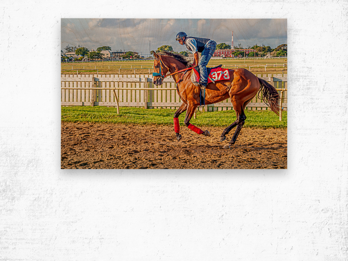Racehorse06 Wood print