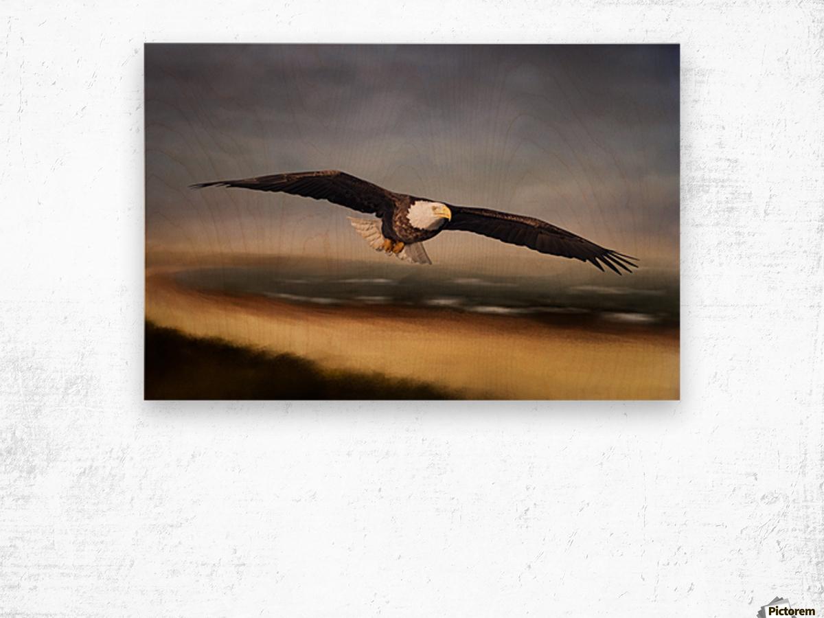 Raptor Skies Wood print