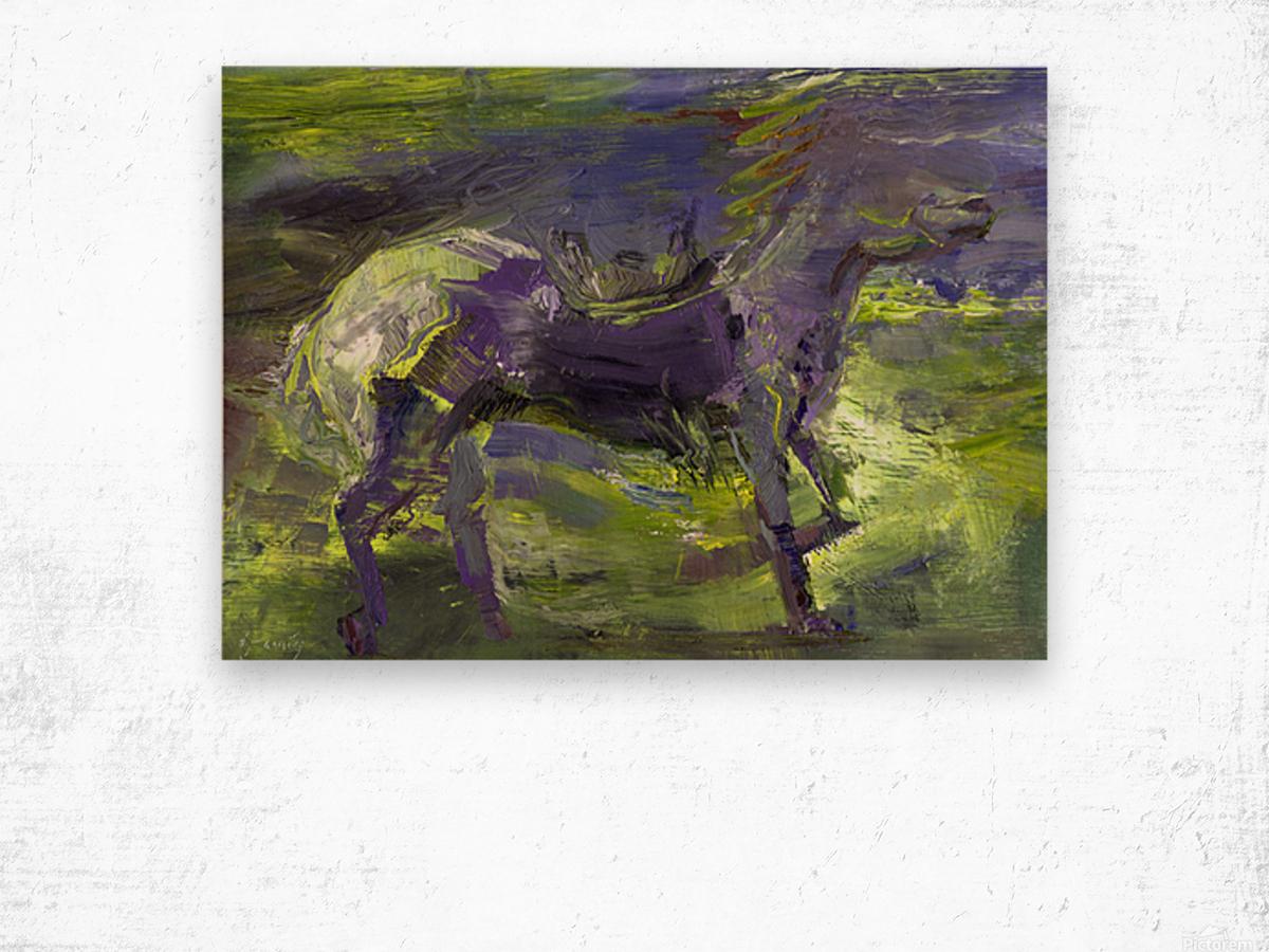 Ghost Rider-  Sage Wood print