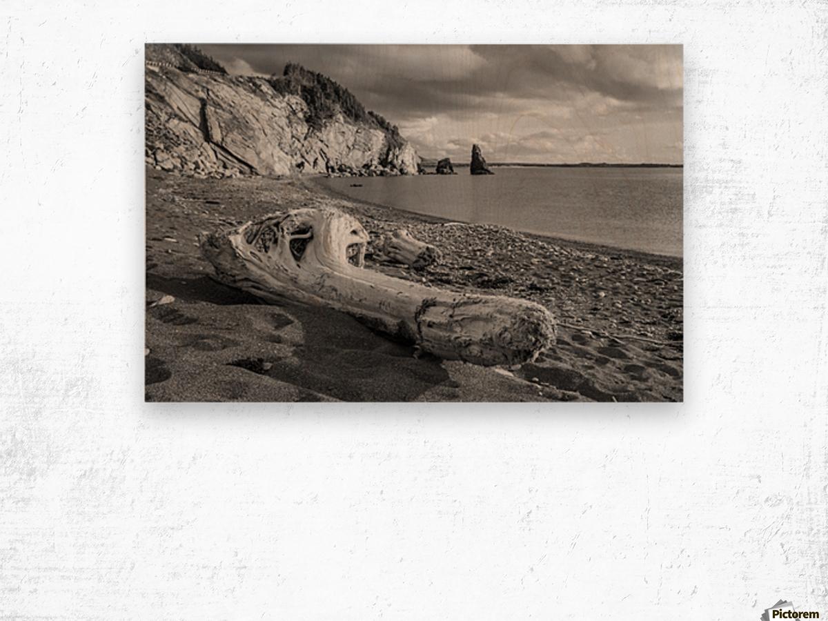 La Presqu'ile in black and white Wood print