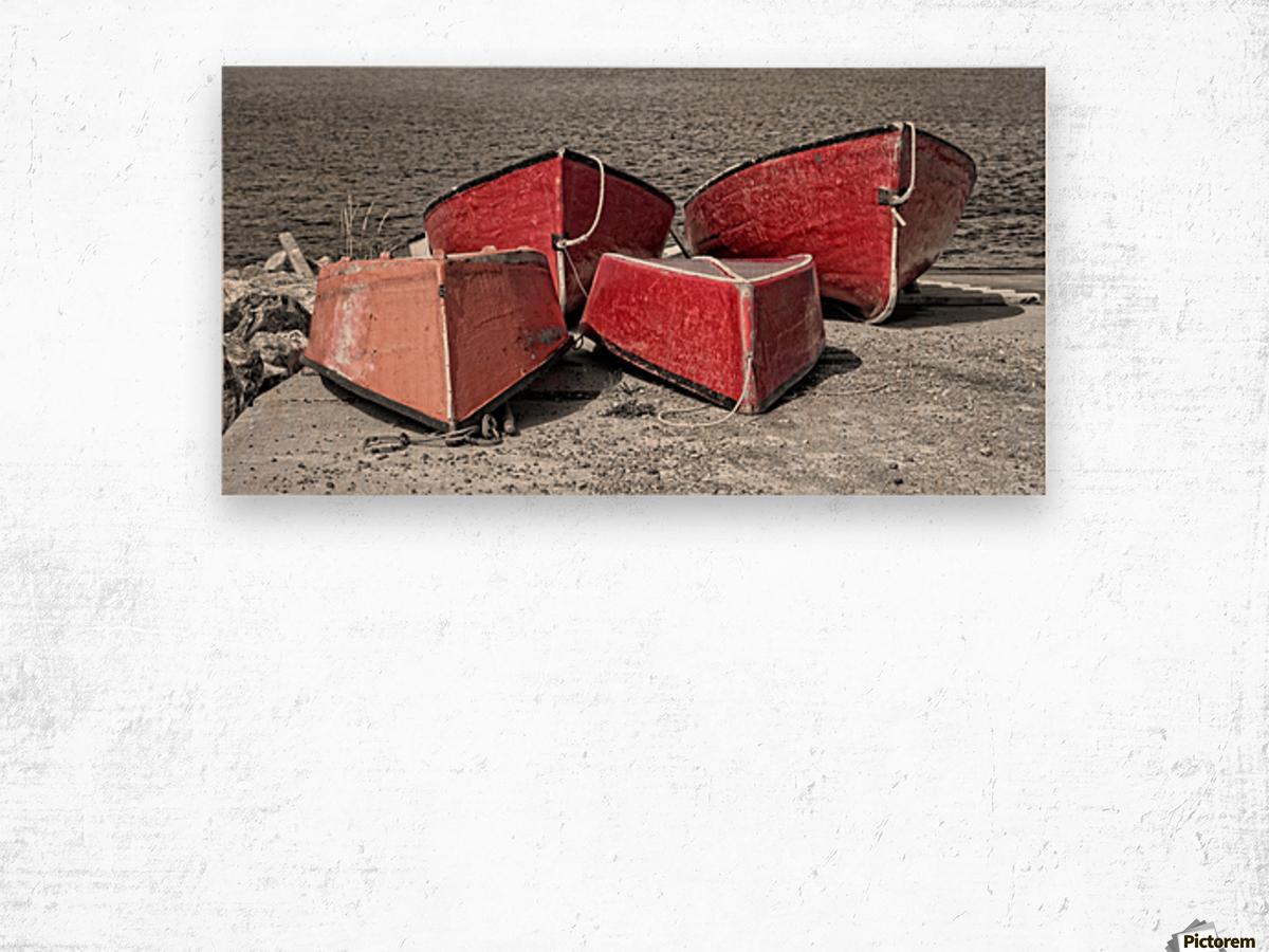 Red Dorries Wood print