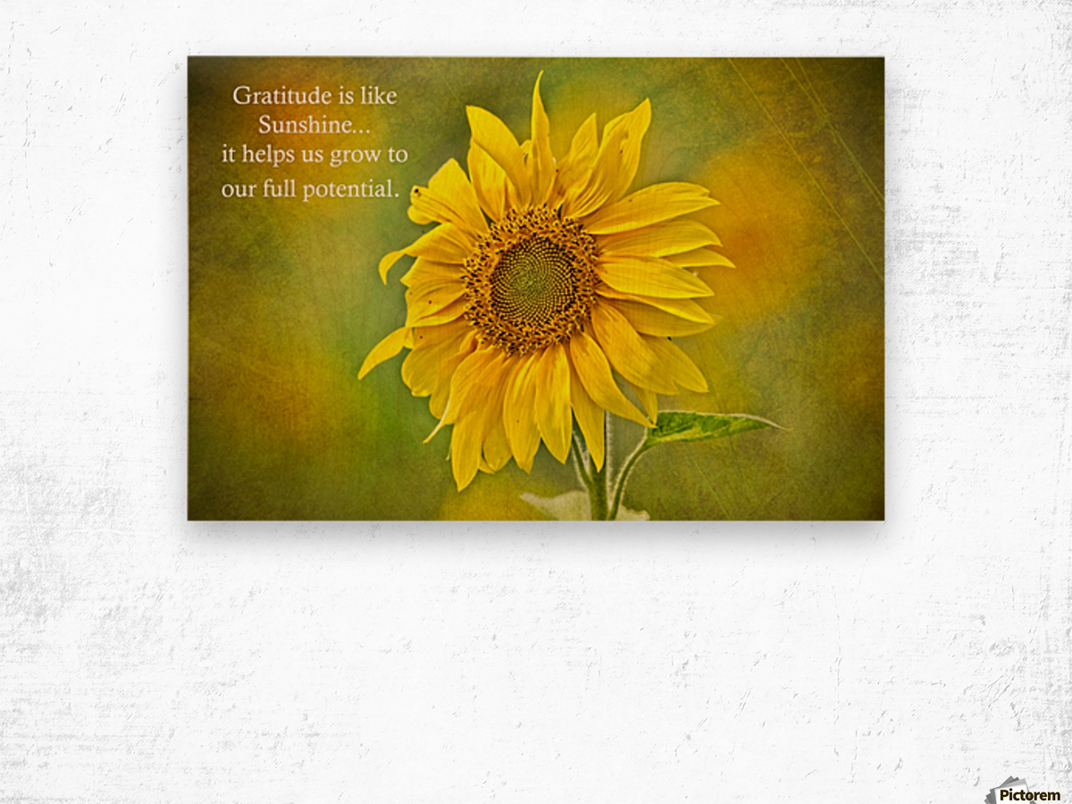 Gratitude is Like Sunshine Wood print