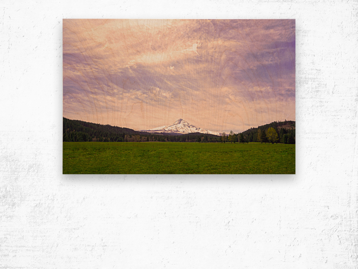 Mount Hood Bathed in Golden Rays at Sunset Wood print