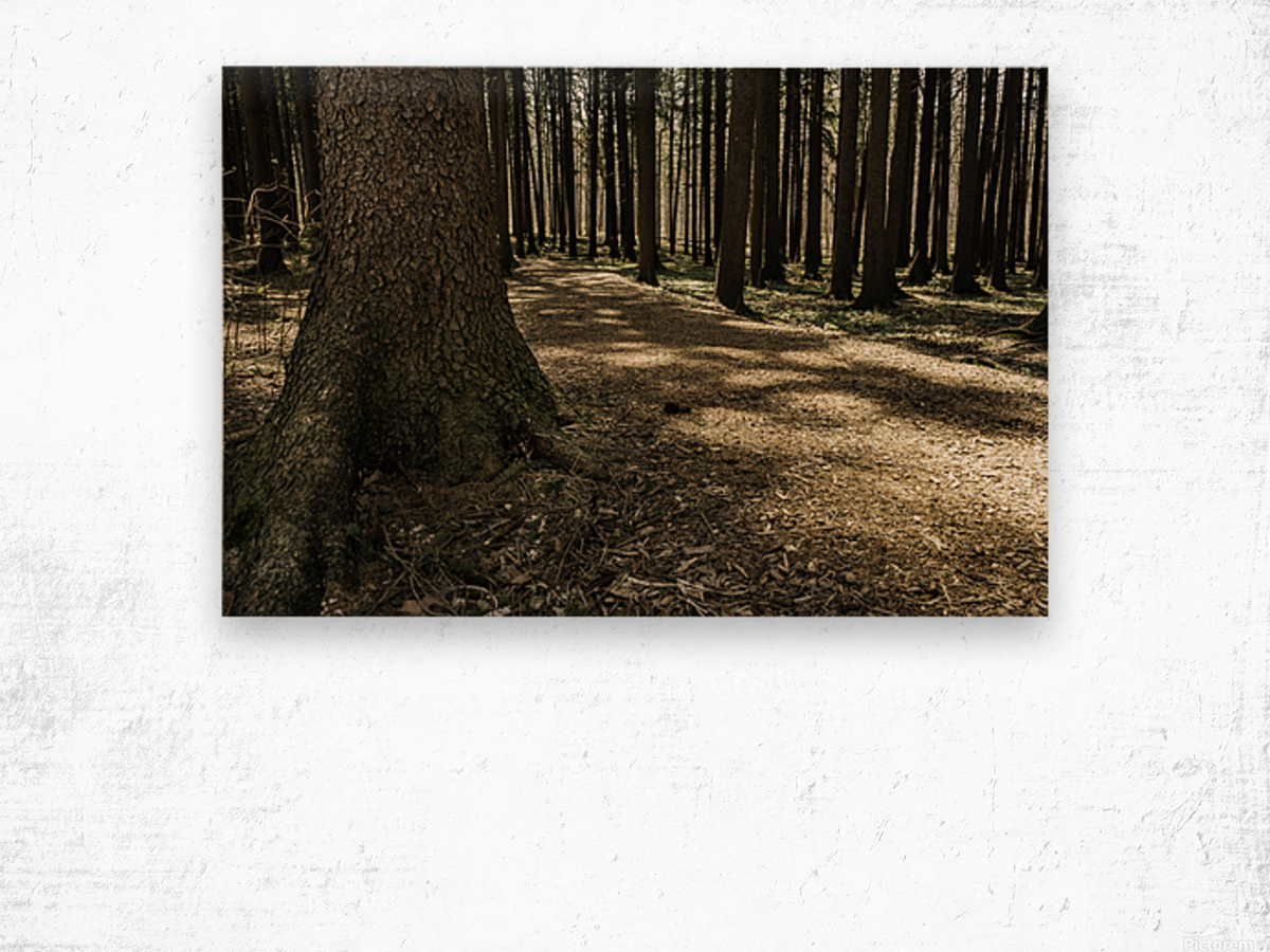 One in a Hundred Wood print