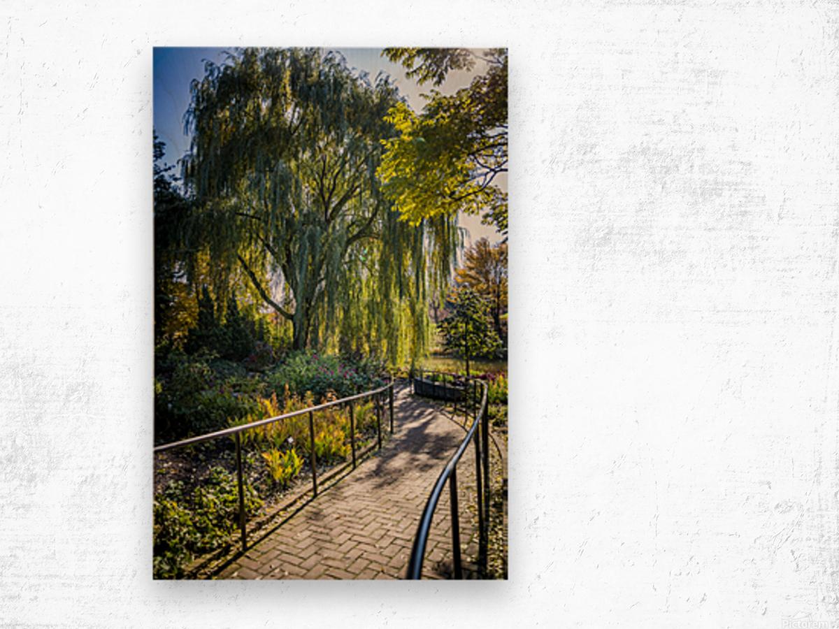 Drape of Trees Wood print