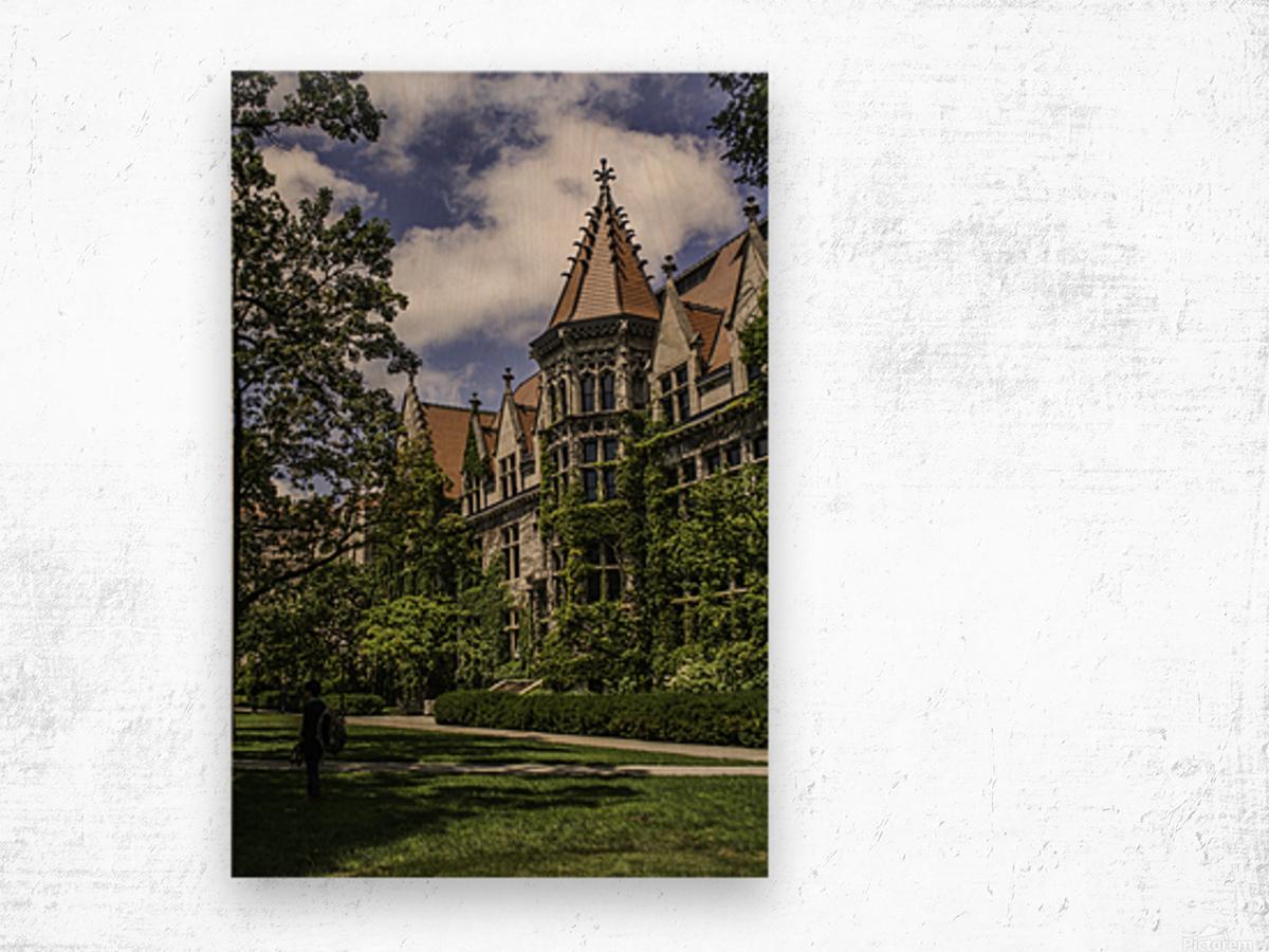 College Green Wood print