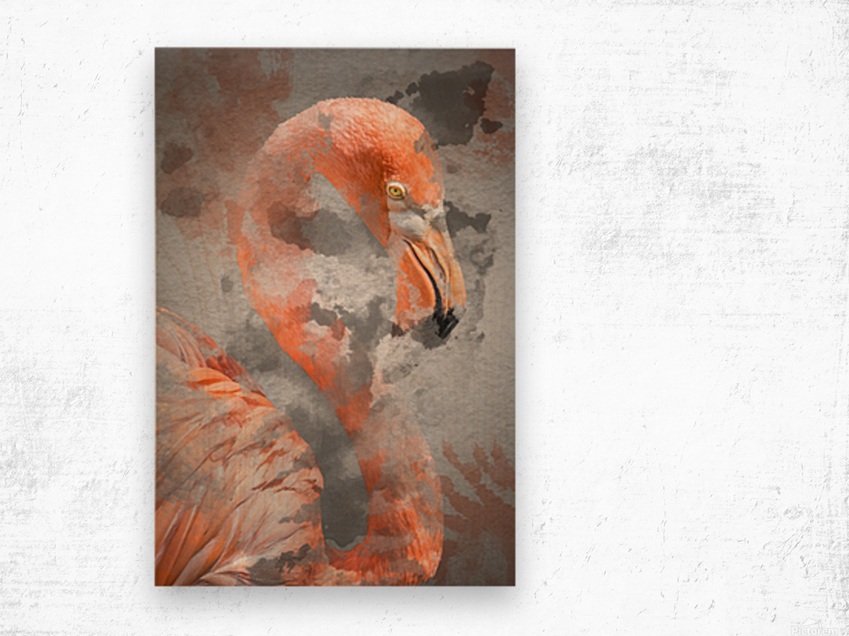 Flamant  Wood print