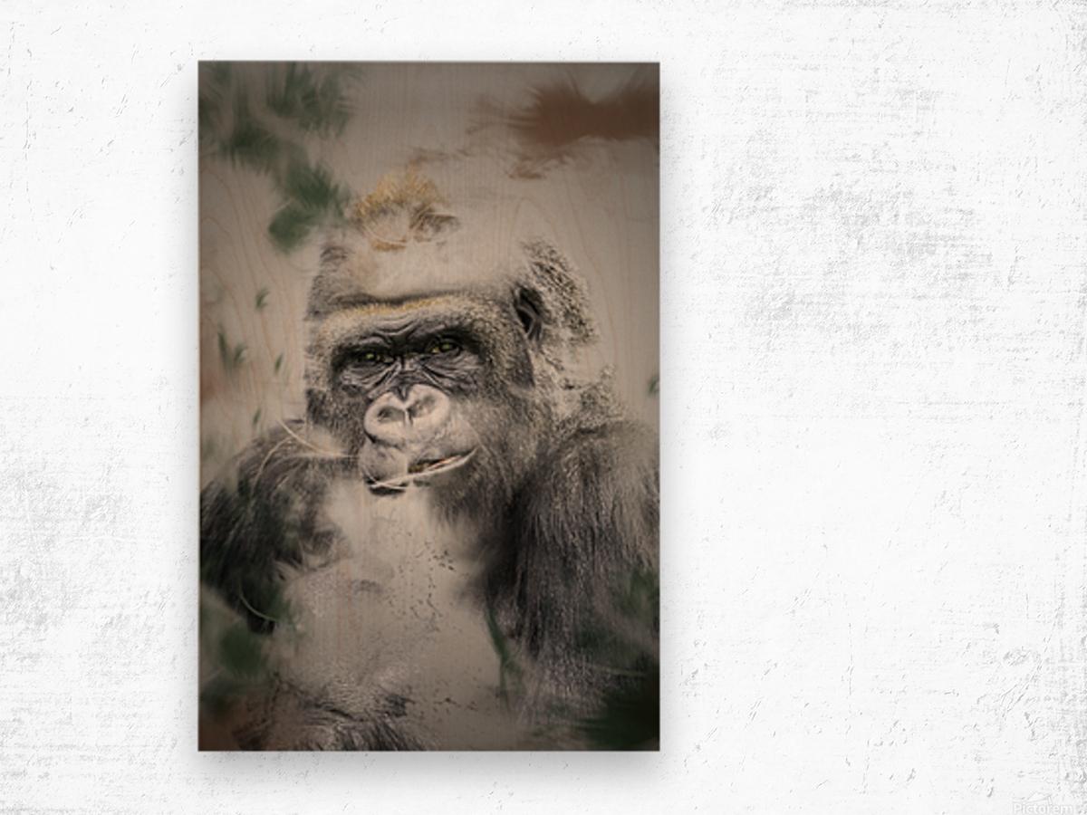 Gorille Wood print